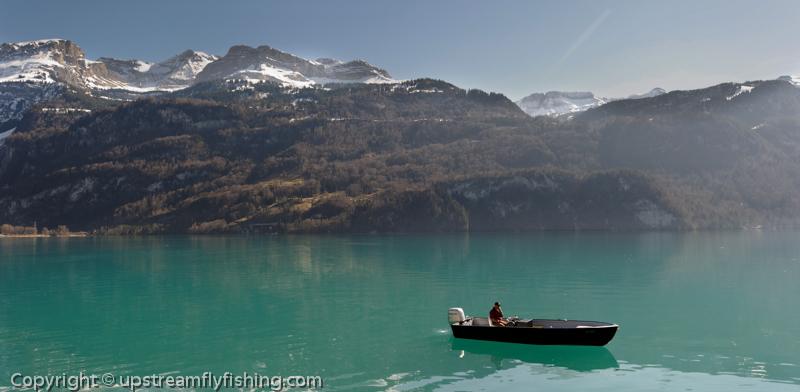 Lake fishing in Switzerland for lake trout